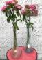 2 Vases en Verre Bullé Signés Biot [Prix Pièce]