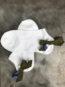 Paire de Chaussettes Bowtie #2white