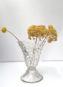 Vase Ancien Évasé